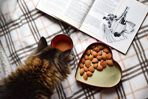 libro-cocina